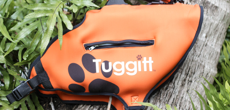 tuggit soft dog harness product prototype on a tree branch